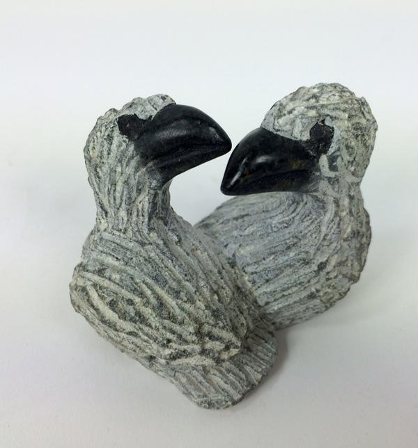 amandla beeld vogel